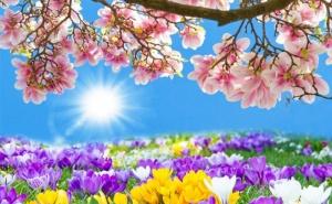Празнувайте Цветница с Екскурзия до <em>Солун</em>, Гърция! Транспорт + Нощувка със Закуска в Хотел Sun Beach 4* с Далла Турс!