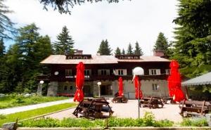 Нощувка на човек със Закуска - без или със Обяд и Вечеря в Хотел Боерица, Природен Парк Витоша