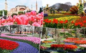 Екскурзия до <em>Истанбул</em>, Турция за Фестивала на Лалето! 2 Нощувки на човек със Закуски  + Транспорт и Посещение на Одрин  от Та Поход