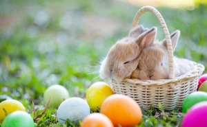 Празнично Великденско Предложение от Хотел Инфинити Парк и Спа Хотел 4*, Велинград! Пакет за Двама - Три Нощувки със Закуски, Вечери, Музикално-Развлекателни Програми,  ...