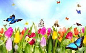 Пролетна Ваканция във Велинград, Хотел Велина 4*! Пакет за Двама - Три Нощувки със Закуски, Минерален Басейн, Зала за Релакс, Сауна, Джакузи, Леден Фонтан / 10.04 - 16.04.2020