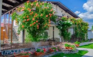Нощувка за до 16 Човека + Механа и Барбекю в Къща Вия - Сапарева Баня