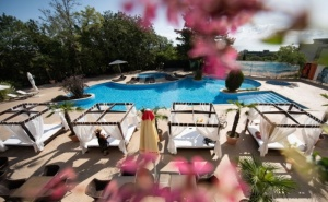 Нощувка на човек на БазаUltra All Inclusive + Басейн, Чадър и Шезлонг на Плажа от Хотел Аполо Спа Ризорт, <em>Златни Пясъци</em>. Дете до 11.99Г. Безплатно!
