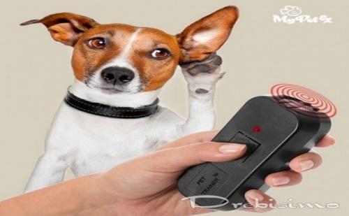 Дистанционно за Дресиране на Кучета