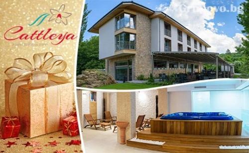 Коледа край Ловеч. 3 нощувки, 3 закуски, 2 празнични вечери с DJ парти + РЕЛАКС зона в Хотел Катлея, с. Крушуна