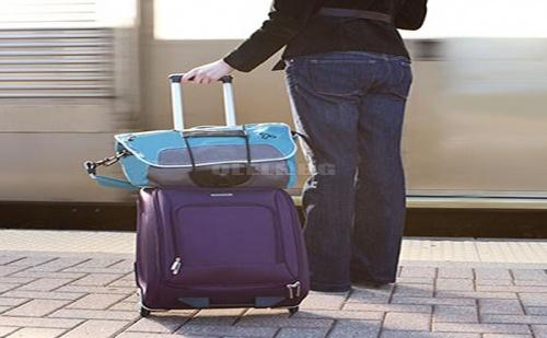 Държач за куфари Bag Bungee