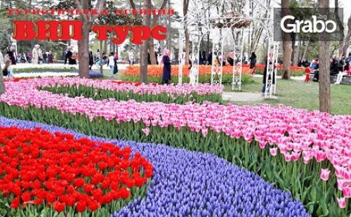 Екскурзия до <em>Истанбул</em> за Фестивала на Лалето! 2 Нощувки със Закуски, Плюс Транспорт