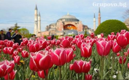 Посетете Фестивалa на Лалето в <em>Истанбул</em>! Транспорт + 2 Нощувки със Закуски и Богата Туристическа Програма от Еко Тур Къмпани