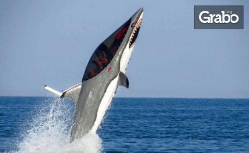 Най-Новият Воден Атракцион в България и Европа! 15-Минутно Екстремно Гмуркане с акула в Слънчев Бряг