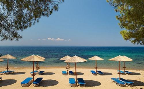 Ранни Резервации: 5 Нощувки със Закуски и Вечери в Blue Dolphin Hotel 4*, Халкидики, Гърция през Май!