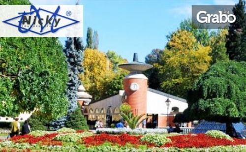 За 3 Март в Сърбия! Посети <em>Ниш</em>, Върнячка Баня и Крушевац с 2 Нощувки със Закуски и Вечери, Едната Празнична, Обяд и Транспорт