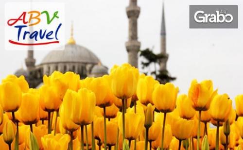 Посети Фестивала на Лалетата в <em>Истанбул</em>! 2 Нощувки със Закуски, Плюс Транспорт и Посещение на Одрин и Чорлу