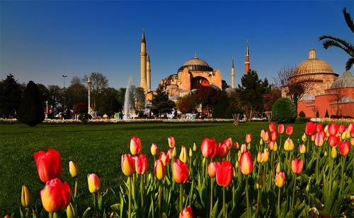Фестивала на Лалето в <em>Истанбул</em>! Транспорт + 5 Дни/3 Нощувки със Закуски в Хотел No Name 2/3* и Посещение до Чорлу с Абв Травелс!