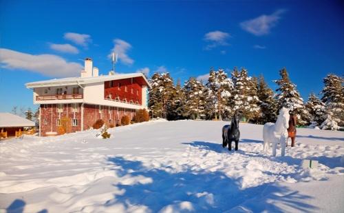 На Ски в Паничище през Януари! Нощувка със Закуска и Вечеря* в Хотел Луч!