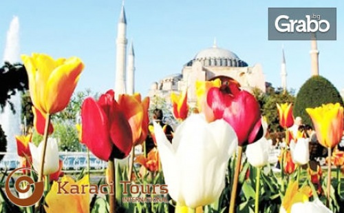 За Фестивала на Лалето в Истанбул! Екскурзия с 2 Нощувки със Закуски, Плюс Транспорт от Варна и Бургас