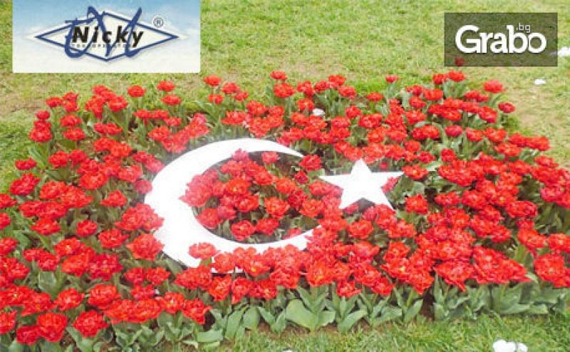 За Фестивала на Лалето в <em>Истанбул</em>! Екскурзия с 2 Нощувки със Закуски, Транспорт и Посещение на Одрин